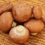 Mushrooms Shelf Life: Can It Go Bad?