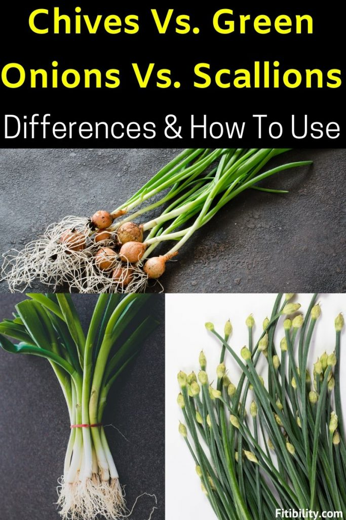 chives green onions scallions differences