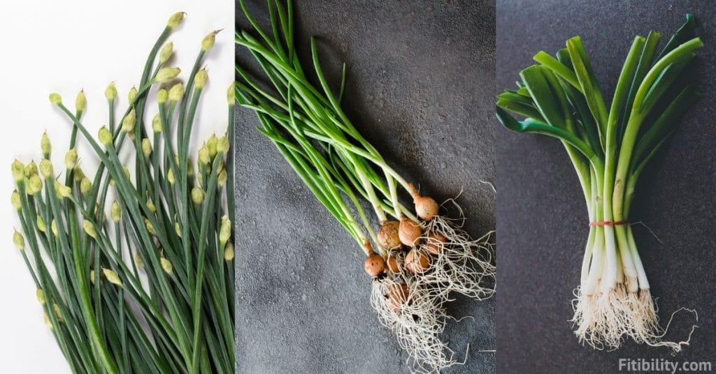 chives vs green onions vs scallions