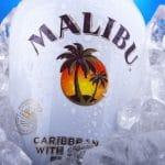 Malibu Coconut Rum Shelf Life: Can It Go Bad?