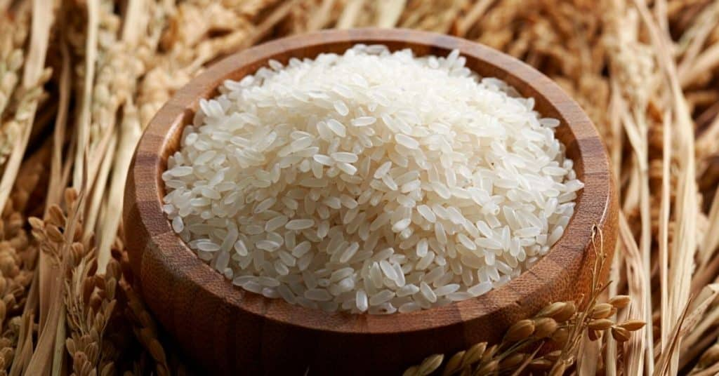 rice shelf life