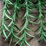 Top 7 Rosemary Substitutes That Are Very Aromatic and Easy to Use