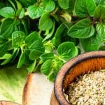 Top 7 Oregano Substitutes For Your Favorite Italian Meals