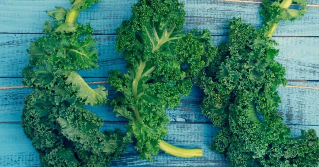 freeze kale