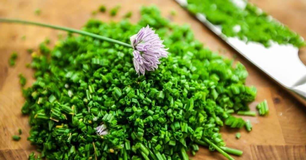 chives substitute