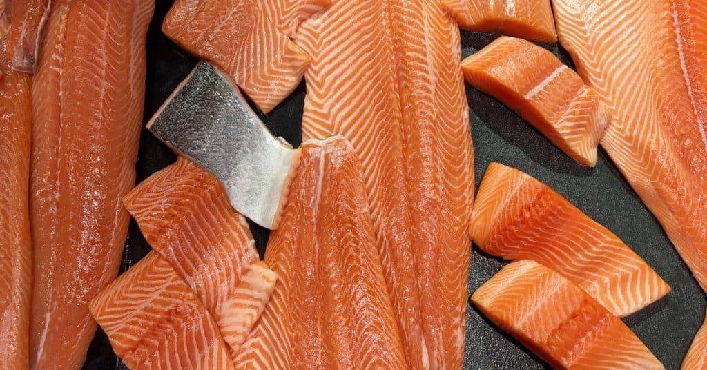 freeze salmon