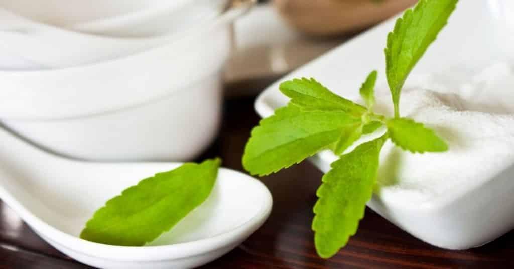 stevia shelf life