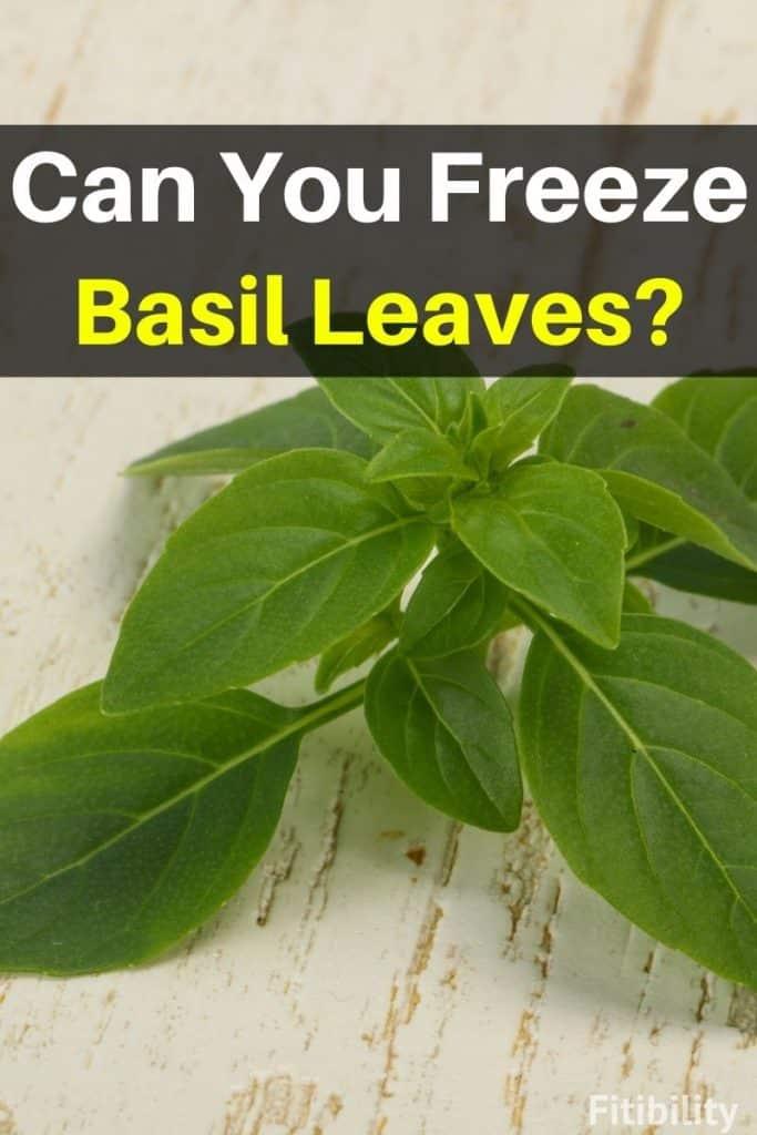 frozen basil leaves